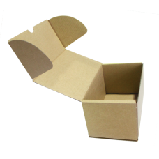 Single wall Plain Die cut Box - 240(L) x 130(W) x 125(H) mm